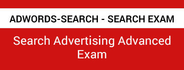 Adwords-Search Questions PDF