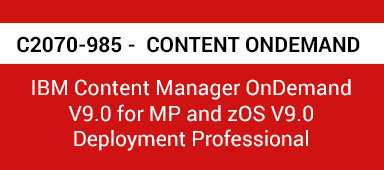 C2070-985 PDF with Exam Questions and Answers
