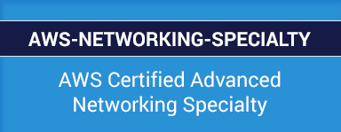 AWS Certified Advanced Networking Specialty Questions VCE